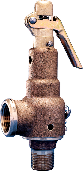 Series 6000 Safety Relief Valves